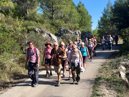 Easy and Moderate walks in the Local Valleys prove popular
